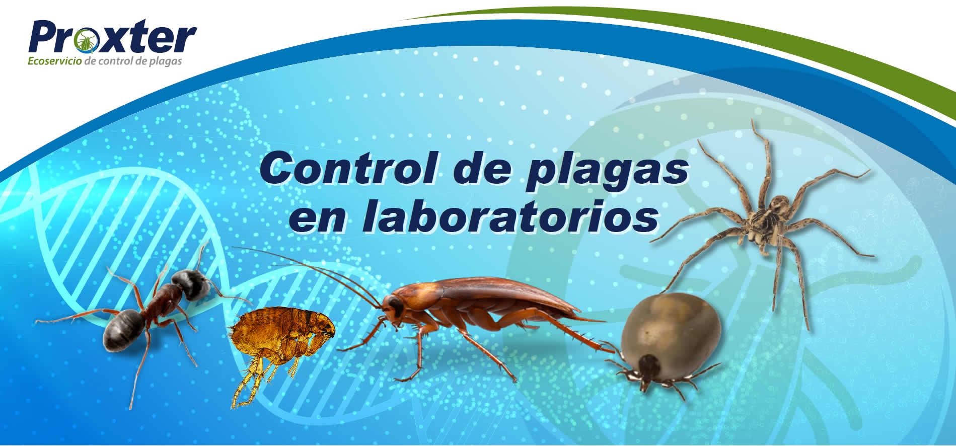 Control de plagas de tu laboratorio